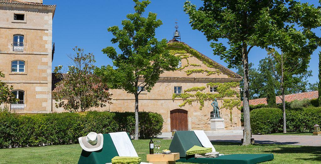 Découvrez un incroyable domaine viticole d'une vingtaine hectares...