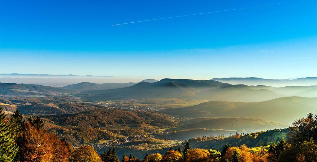 Envie de vous évader dans les Vosges ?