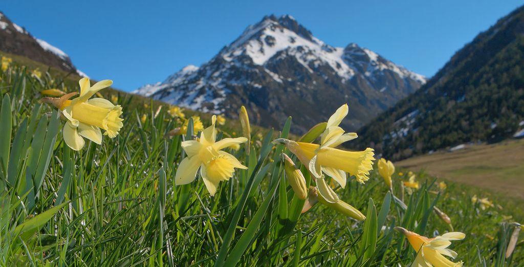 Bienvenue en Andorre !