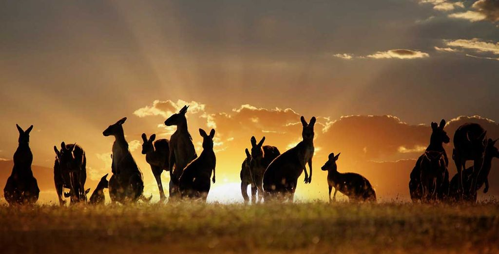 L'Australie avec Voyage Prive