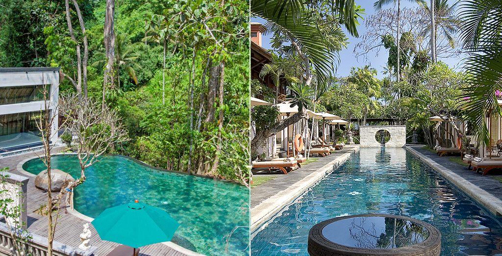 N'hésitez plus entre découverte et détente à Bali... Offrez-vous le meilleur !