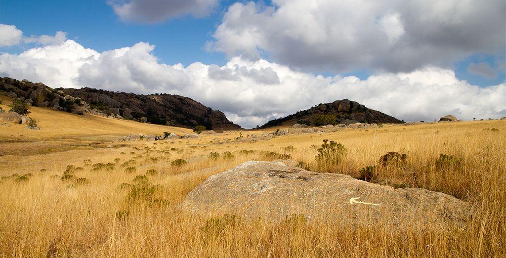 Votre aventure vous ménera jusqu'à Hluhluwe et son Parc National...