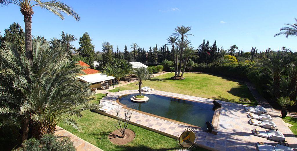 Situé dans la palmeraie... - Palais Dar Ambre 5* Marrakech