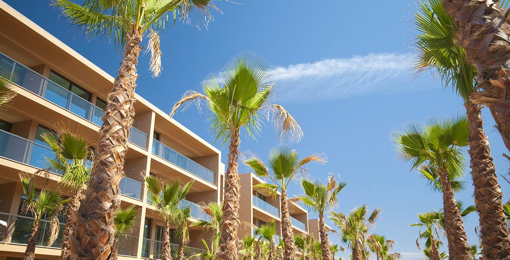 Un élégant établissement entouré de majestueux palmiers