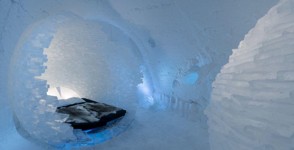 Certaines sont mêmes logées dans un igloo
