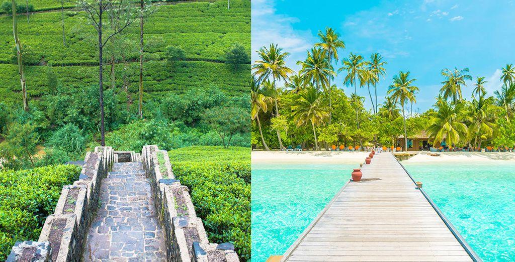 Le meraviglie dello Sri Lanka in tour + Maldive Adaaran Select ...