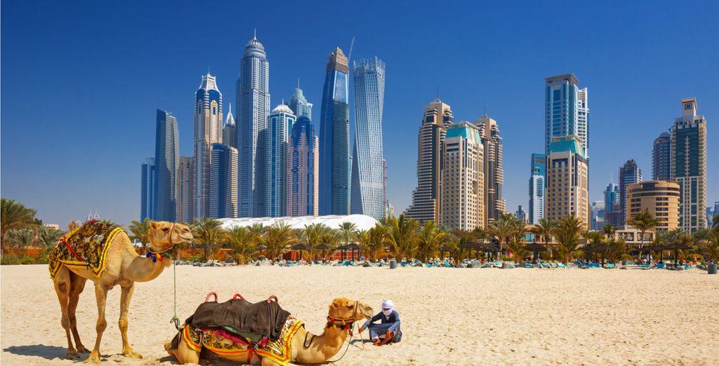 Dubai e il deserto