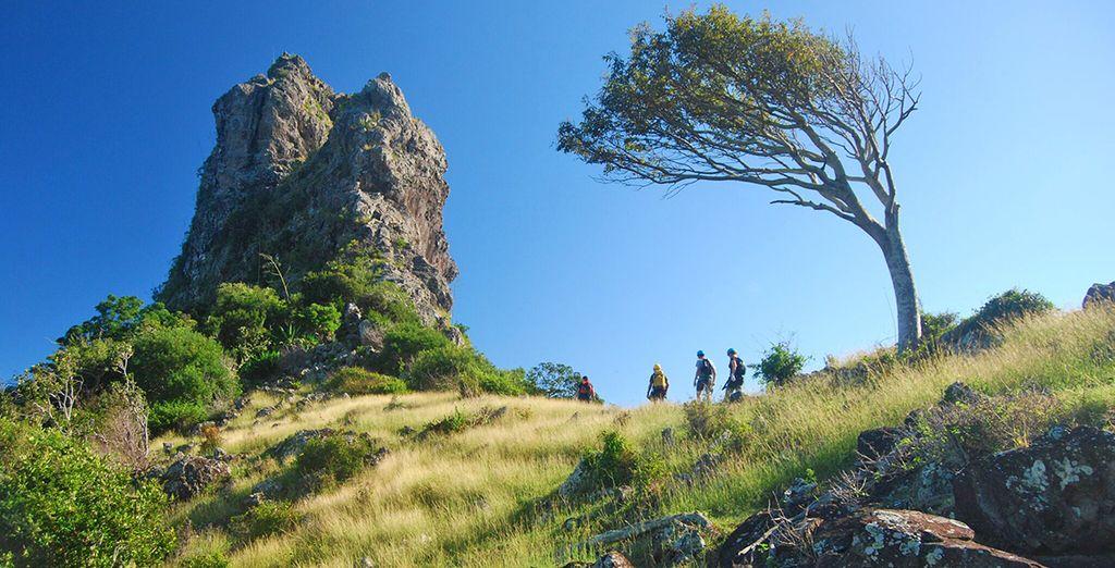 Partite alla scoperte dei parchi naturali che fanno  di Mauritius il paradiso dei fanatici del trekking e degli amanti della natura