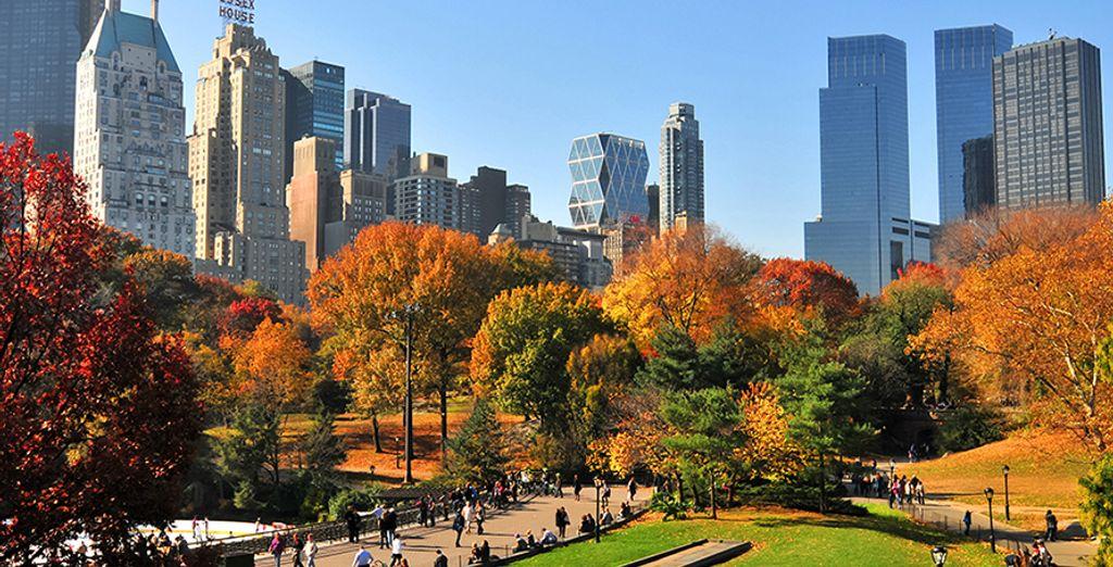 Scoprite l'incantevole New York in ogni suo angolo!