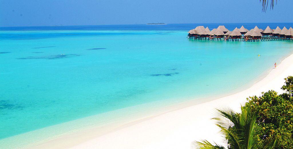 Infinite distese di sabbia bianchissima e mare cristallino vi attendono