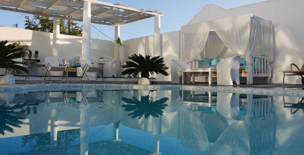avrete a disposizione un'ampia piscina con comode sdraio per prendere il sole