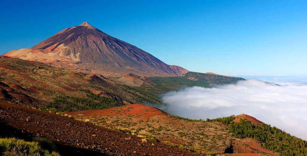 Benvenuti nel cuore di Tenerife