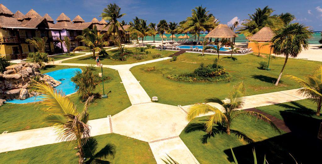 A Tulum soggiornerete al Pavoreal Beach Resort Tulum 4*immerso nella vegetazione tropicale