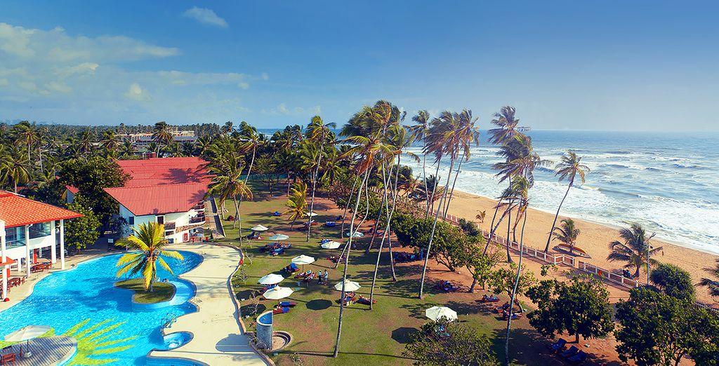Partite per un soggiorno 5* in Sri Lanka