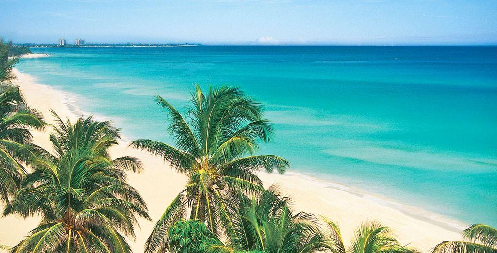 A pochi passi da spiagge paradisiache.