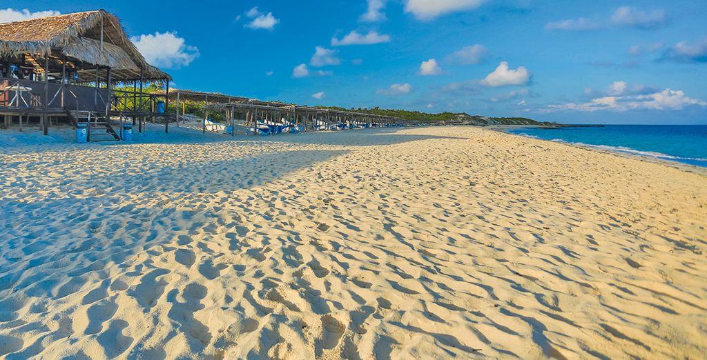 Trascorrete le vostre giornate presso la bellissima spiaggia di sabbia bianca di Cayo S.Maria