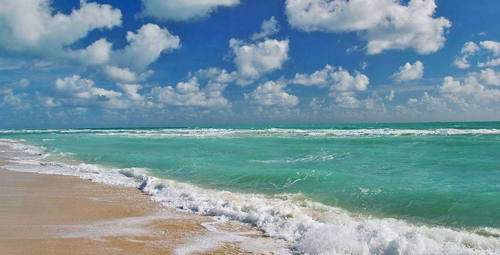 Vi permetterà di trascorrere momenti in totale tranquillità in spiaggia
