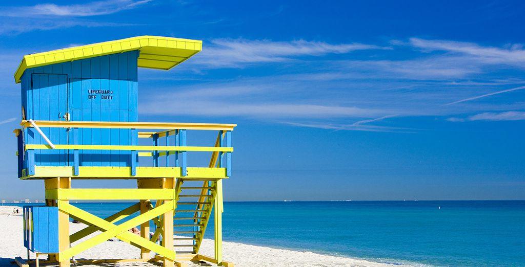 Non perdete la possibilità di visitare Miami
