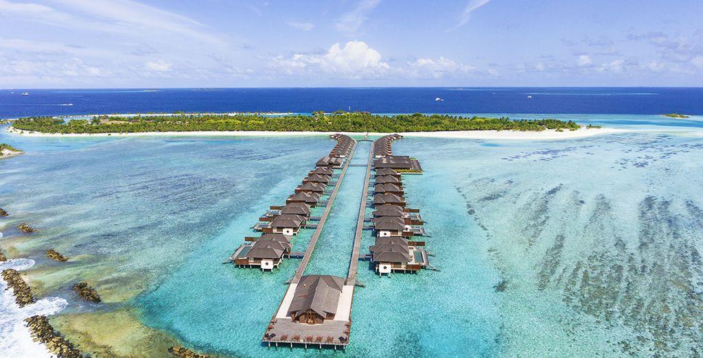 Tour privato dello Sri Lanka e soggiorno mare alle Maldive