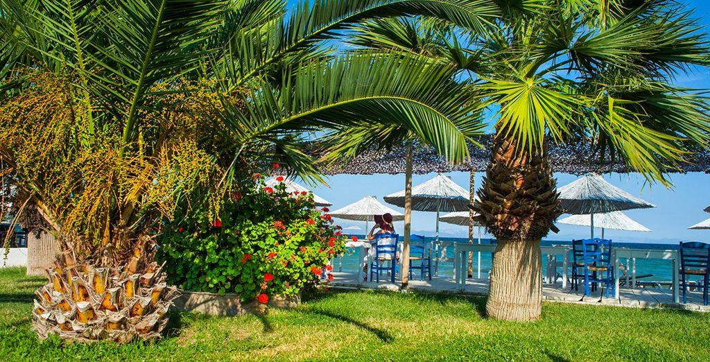 Il Grand Bleu Beach Resort è immerso in una ricca vegetazione