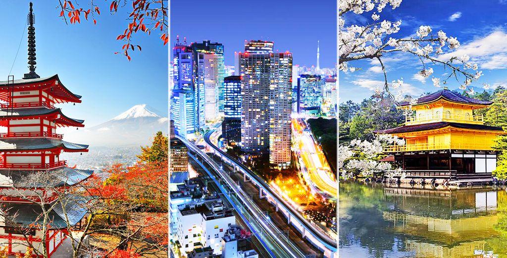 dove potrete ammirare le molteplici bellezze del Giappone