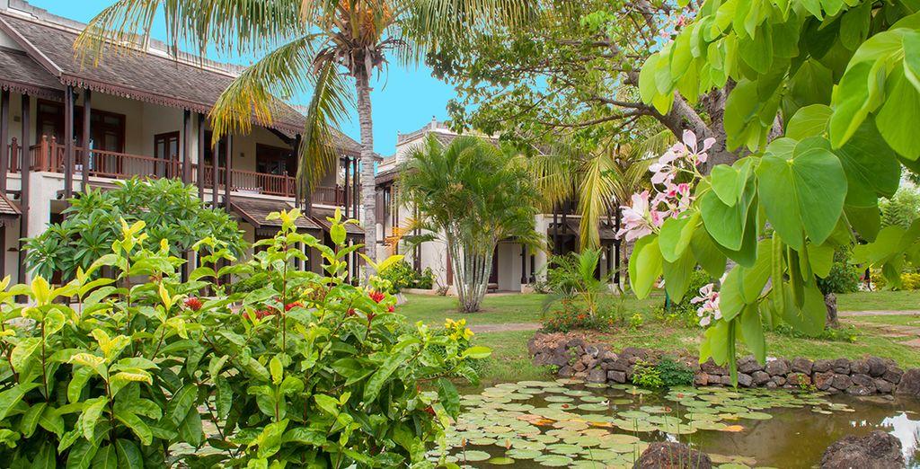 Sarete circondati da una vegetazione tropicale