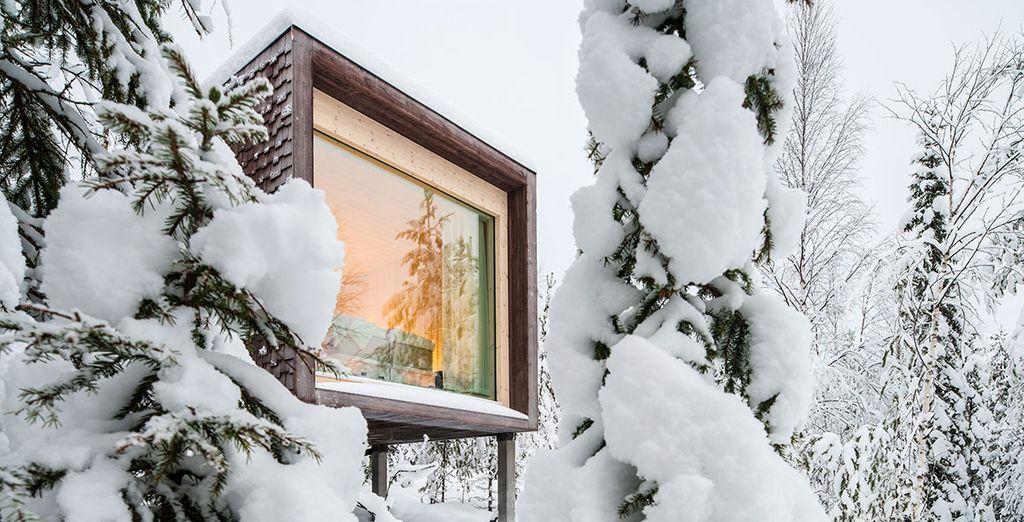 Questo è l'Arctic boutique hotel