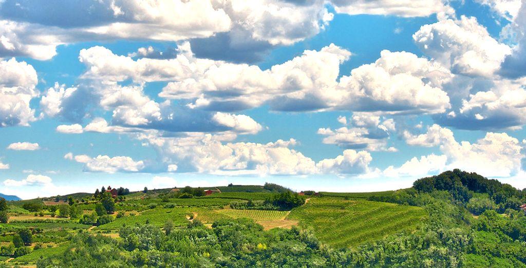 Un territorio collinare dal notevole pregio paesaggistico
