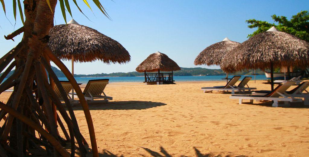 Lasciatevi trasportare dalla melodia delle onde sulla spiaggia di sabbia fine con ombrelloni e lettini