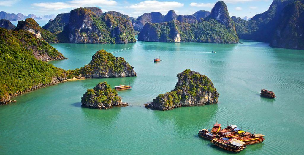 Paesaggio verde e parco naturale in Vietnam
