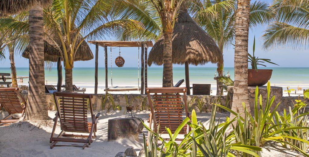 Concluderete il soggiorno sulle spiagge di Isla Holbox
