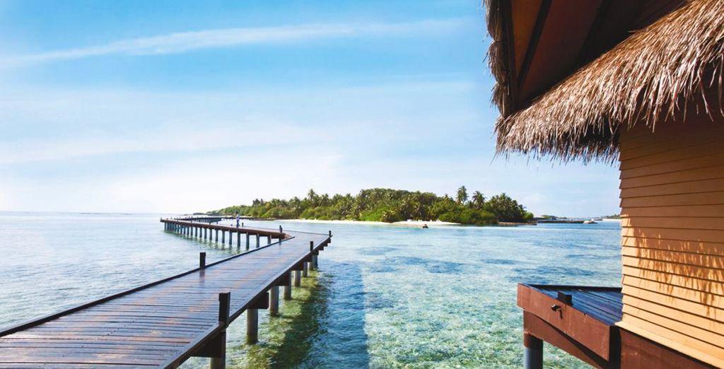Soggiorno Mare Sri Lanka : Recensioni minitour sri lanka soggiorno mare maldive