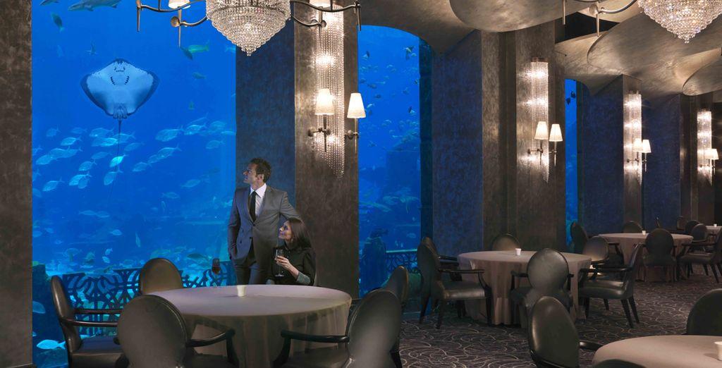 Ammirate l'immenso acquario del resort