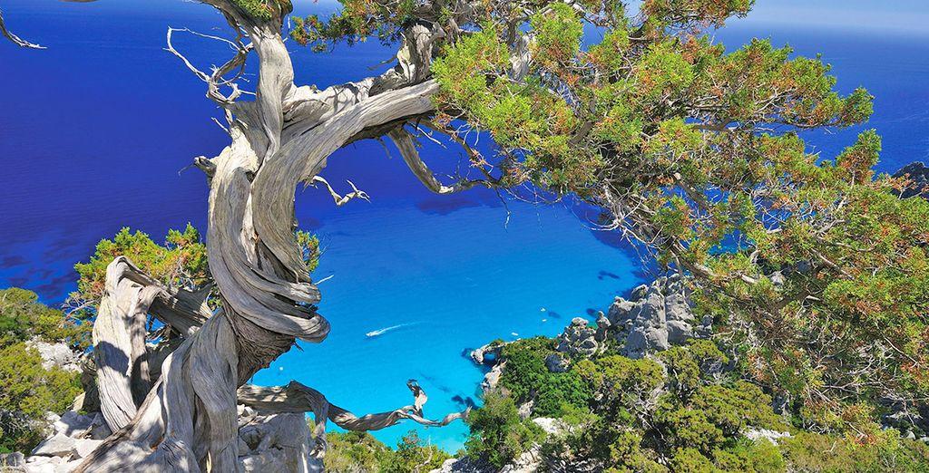 Partite alla scoperta della Sardegna
