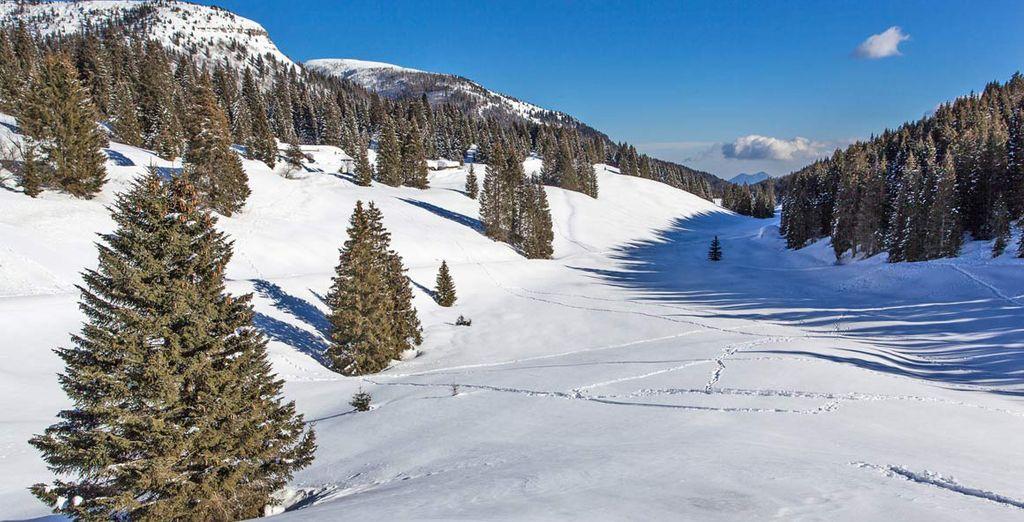 Paesaggi e montagne innevate del Trentino in Italia