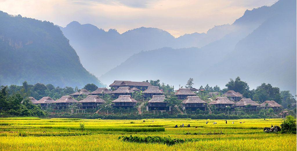 Paesaggi verdi del Vietnam