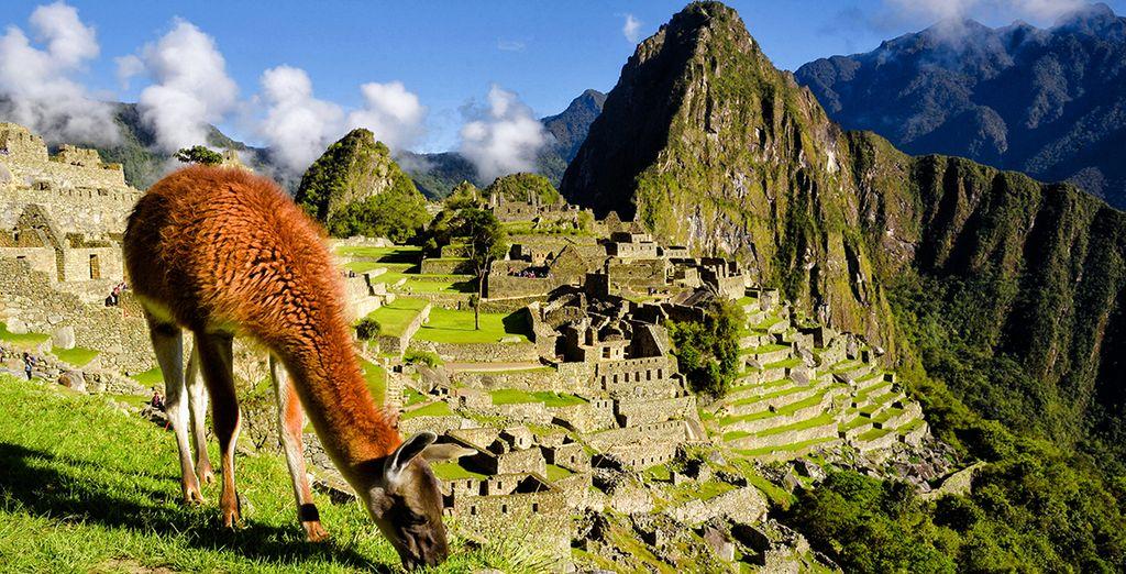 Tour privato alla scoperta del Sud del Perù