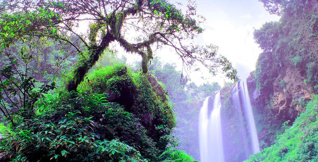 e l'Isola di Banding, verde e lussureggiante