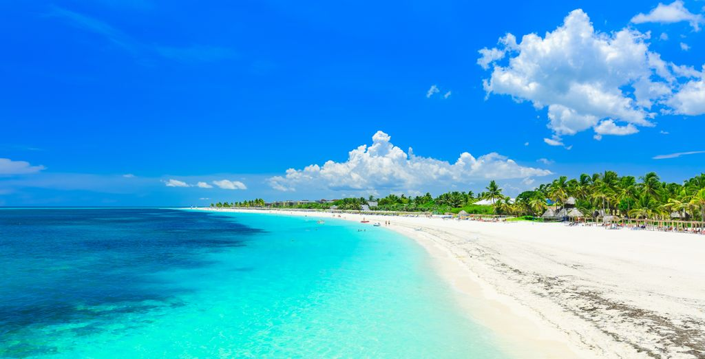 Tour di Cuba in Casa Particular + Paradisus Los Cayos 5*