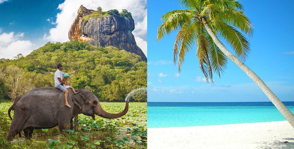 Mini tour Sri Lanka e soggiorno mare alle Maldive Voyage Privé ...