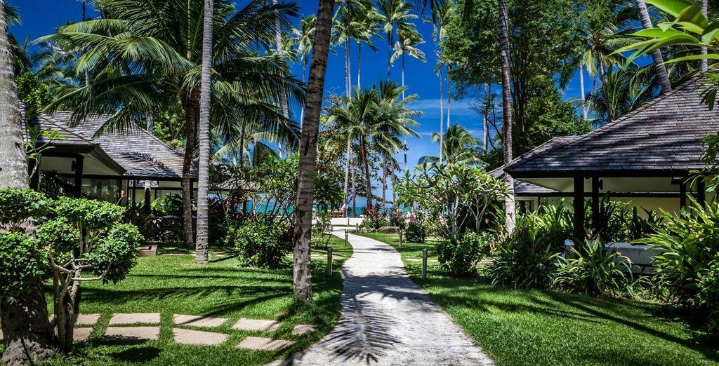 Wandel door weelderige Thaise tuinen