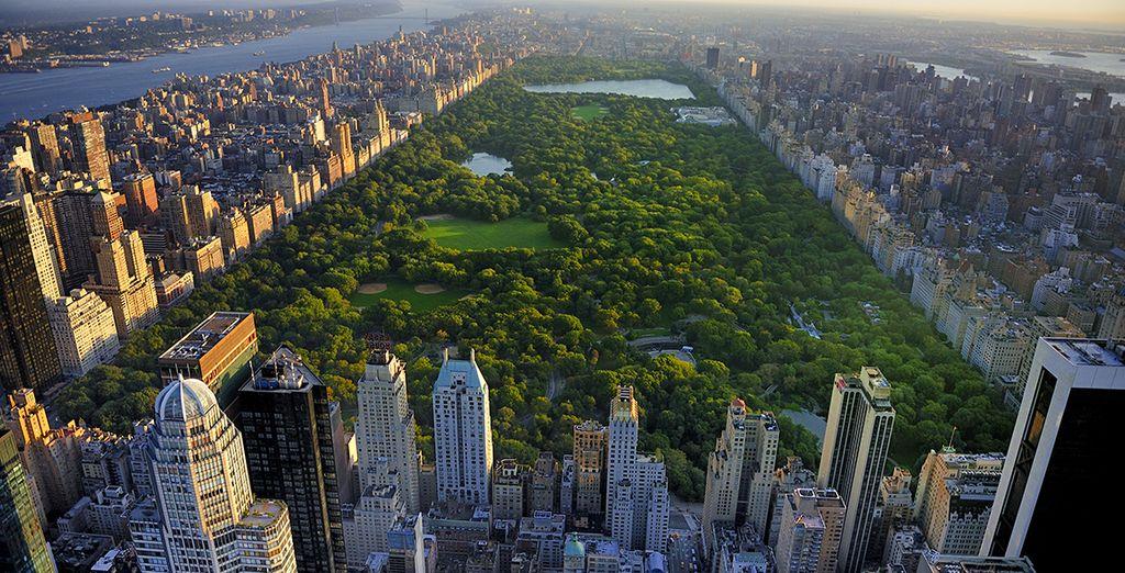 En geniet van het bruisende New York
