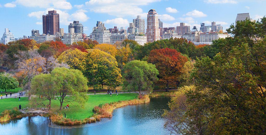 Bij Central Park