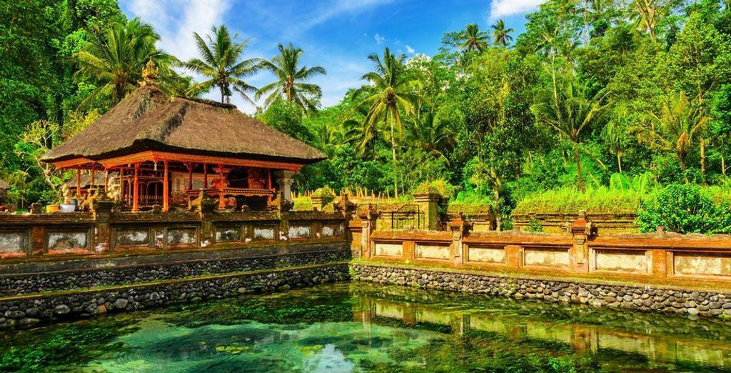 Op naar Bali!