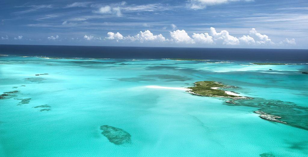 Kies voor een onvergetelijke cruise naar de Bahama's