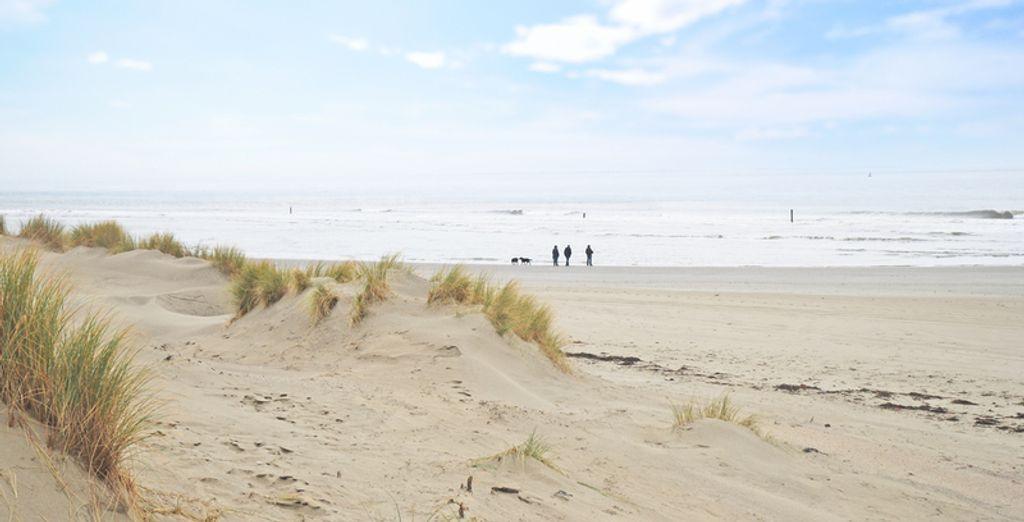 Of maakt u een mooie tocht door de duinen
