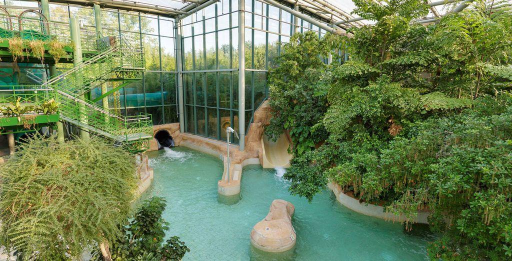 Waterratten zullen de grote keuze aan zwembaden appreciëren