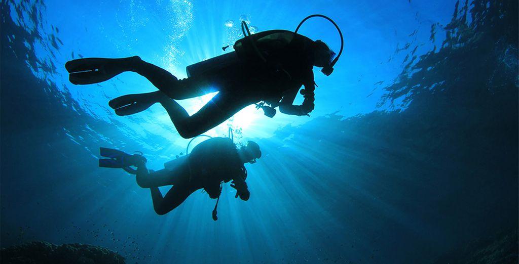 Ontdek de onderzeese wereld