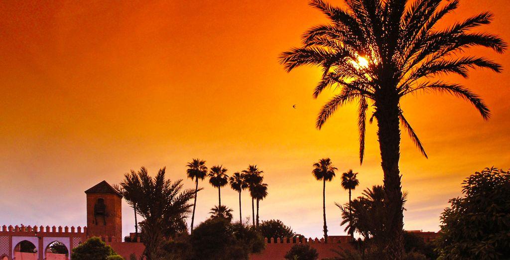 Trek er op uit en ontdek het kleurrijke Marrakech