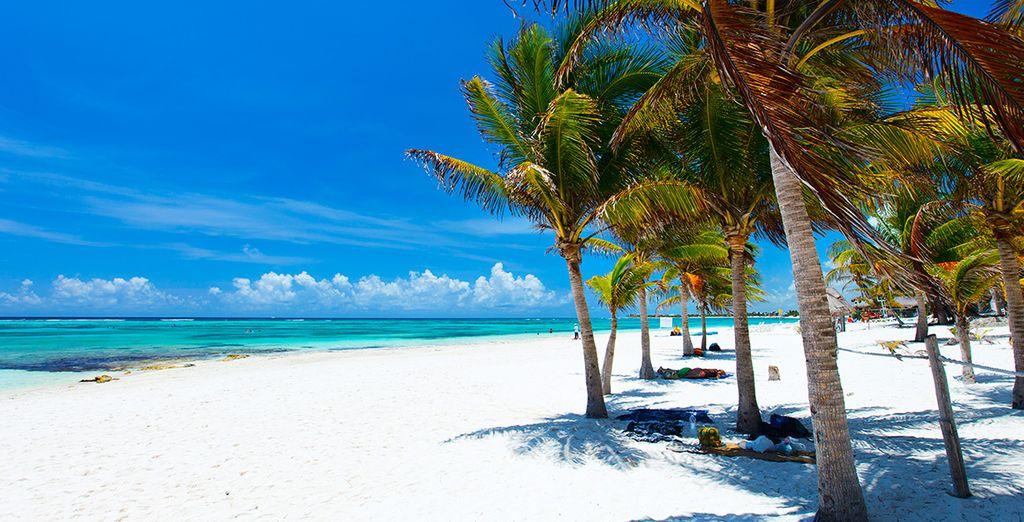 Aan het geweldige strand van Riviera Maya